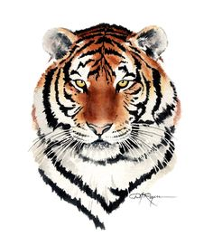 TIGER Watercolor Painting ART Print Signed by by k9artgallery