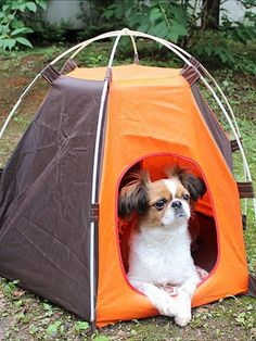 2er Set DEL Lampe Solaire Lampe Camping Portable Jardin Extérieur Living-XXL