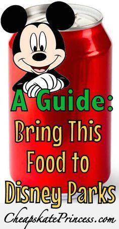 Bringing Food into Disney World Theme Parks, save money on food at Disney World, tips for Disney vacations,