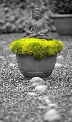 """""""What we think, we become.""""Buddha"""