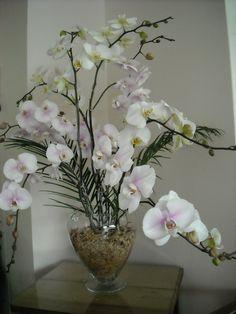 floreros con 10 orquideas. un regalo muy apreciado  www.donaflor.cl