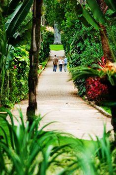 Situado em Brumadinho, a 60 km de Belo Horizonte (MG), o Instituto Inhotim é um Centro de Arte Contemporânea e Jardim Botânico. Possui uma área de 110 ha de visitação, composta de fragmentos florestais e jardins, com uma extensa coleção de espécies tropicais raras, onde estão instaladas obras de arte contemporânea de relevância internacional. Idealizado… Leia mais Inhotim, galeria de arte contemporânea a céu aberto