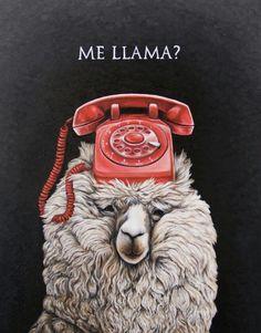 Me llamas ?