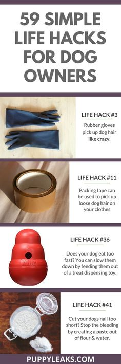 From picking up pet hair with rubber gloves to rotating your dogs toys to keep their interest. Here's 59 simple life hacks for dog owners. #doghacks