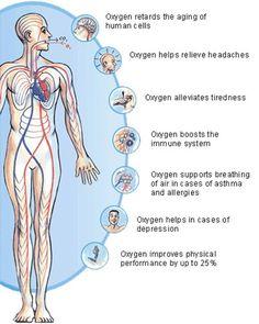 Oxygen Therapy | Nursing Crib