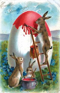 Rabbit On Ladder - Greeting Card | Easter Greeting Cards
