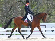 Dressage in Eventing….