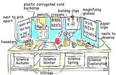 classroom science Centers | science center layout: observation & experiment zone