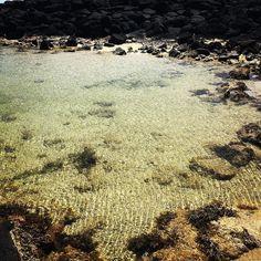 #portfairy #ocean #rockpools by cheriewallace68 http://ift.tt/1UokfWI