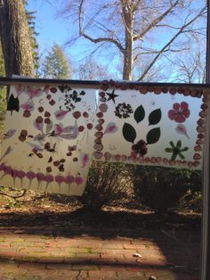Busy and the Beans: An Invitation To Play With Flowers