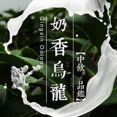 Brewing Guide: The water used to steep this tea should be about or Use about 2 teaspoons grams) of tea leaves for about every 5 ounces milliliters) of water. Oolong Tea, Taiwan, Milk, Childcare, Literature, Strong, Ebay, Club, Garden