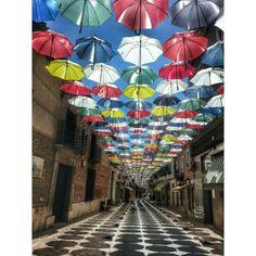 Ahora ya sé dónde están todos esos paraguas que se vuelan cuando hay viento. Se arremolinan sobre las calles, sobre las cabezas de los viandantes, que quedan protegidos del sol y de la lluvia para siempre.  #Valdepeñas, #CiudadReal #CastillaLaMancha #vacaciones #paseosconencanto  Photo by @isabelmartinj Videos, Umbrellas, I Will Protect You, Rain, Street, Vacations, Photos, Video Clip