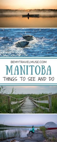 7 reasons you should visit Manitoba, Canada. From adventure in Churchill (the polar bear capital of the world!) to serenity in Nopiming National Park, you won't regret visiting this beautiful, wild, lesser-known province of Canada. Travel in North America Canadian Travel, Visit Canada, Travel Usa, Travel Tips, Travel Ideas, Travel Stuff, Roadtrip, Travel Around, Family Travel