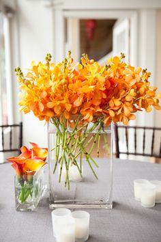 Beautiful Orange Orchids ~ Green and Orange Wedding Inspiration.     by saltharbor.com, photo by myastrid.com
