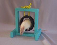 Tire Dog Toy Rat Agility Jump - PetDIYs.com