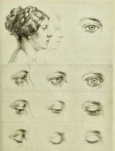 how to draw eyes Drawing Practice, Drawing Lessons, Drawing Techniques, Life Drawing, Figure Drawing, Drawing Sketches, Art Drawings, Sketching, Head Anatomy