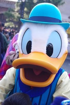 Donald and Daisy and other mascot costumes are available at http://www.hallowmascots.com/, free shipping to US.