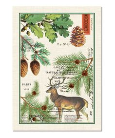 Delightful Balsam Fir Woodland Kitchen Towel   Set Of Three Part 4