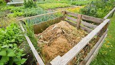 Vous voulez un bon compostage pour votre jardin ? Comment faire du bon compost…