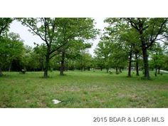 7.67 acres of level land on S. Hwy. 7, in a nice area with good neighbors and a large beautiful home adjoining this lot. Only 1 mile from Highway 5 in Camdenton,MO. There will be a warranty deed restriction disallowing mobile home trailers, double-wide manufactured homes and dog or other animal kennels.