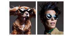 Karen Walker Goes to the Dogs for Summer 2015  - HarpersBAZAAR.com (=)
