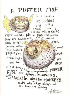 A Puffer Fish by Eric Haines, copyright 2014 Drawing one picture a day, six days a week, for a year http://comedyrocket.com