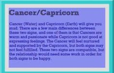 Love match for cancer and capricorn sexual orientation