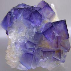 Fluoriteon Quartz