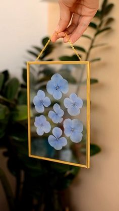 Framed pressed flowers blue hydrangea,Beautiful pressed flower frame will look perfect in your home. Bringing nature into your home is easier than it seems. This elegant floating frame mak. Flower Crafts, Diy Flowers, Flower Decorations, Blue Flowers, Home Flower Decor, Flowers In Home, Flower Room, Real Flowers, Fleurs Diy