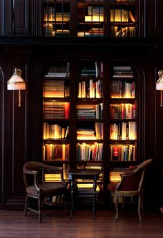 Living room idea. Lighted bookcase.