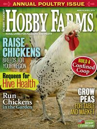 love this magazine - so many great ideas/information -Check out the March/April 2013 issue of Hobby Farms magazine! Types Of Chickens, Raising Chickens, Discount Mags, Urban Chickens, Chicken Scratch, Chicken Breeds, Hobby Farms, Urban Farming, Coops