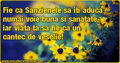 Fie ca Sanzienele sa iti aduca numai voie buna si sanatate, iar viata ta sa fie ca un cantec de veselie! Minions, Christian, Urban, Holidays, Facebook, The Minions, Holiday, Minion Stuff, Minion