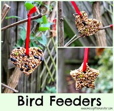 Messy Little Monster: How to make bird feeders using 3 ingredients and a biscuit cutter.  Easy activity for kids and gift idea.