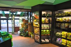 Serpentarium reptile zoo by Mojo Design. Visit City Lighting Products! https://www.linkedin.com/company/city-lighting-products