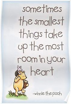 Winnie the Pooh Poster Now Quotes, Life Quotes Love, Great Quotes, Inspirational Quotes, Funny Quotes, Love Quotes For Family, Lyric Quotes, Movie Quotes, Happy Quotes