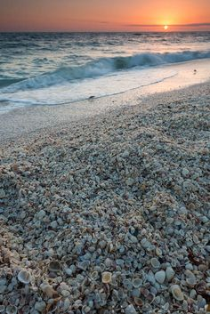 Sanibel Island, Florida is known for white sand beaches, clear blue water, and is a seashell collector's paradise.