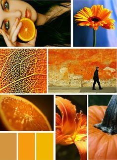 sape orange shweshwe moodboard - 236×323