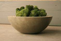 Concrete Bowl & Moss