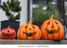 Pumpkins in the garden. The post Halloween pumpkins. Halloween holiday appeared first on Halloween Pumpkins. Scary Halloween Pumpkins, Scary Faces, Pumpkin Carving, Garden, Holiday, Garten, Vacations, Lawn And Garden, Carving Pumpkins
