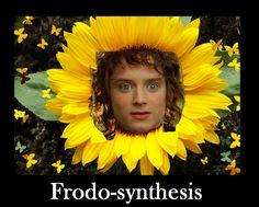Frodo-synthesis.