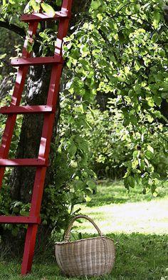 Helpot tikkaat – katso ohje! | Meillä kotona Ladder Decor, Outdoor Structures, Patio, Garden, Flowers, Plants, House, Home Decor, Garten