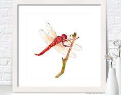ORIGINAL Watercolor Painting Dragonfly painting by coloribli