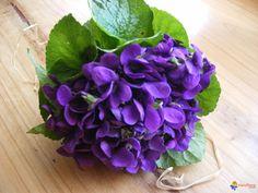 """MESSAGE D'AMOUR  Et puisque """"l'amour est un bouquet de violettes"""", les amoureux en font leur messager en s'offrant des petits bouquets ronds. Pour séduire les gourmands, la douce fleur se..."""