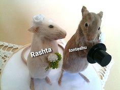 Cute Rats, Cute Funny Animals, Funny Taxidermy, Love Birds Wedding, Deer Wedding, Fancy Rat, Webtoon Comics, House Mouse, Wedding Cake Toppers