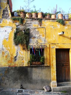 San MIguel de Allende, Mexico. Real. ONE OF MY FAVORITE SIGHTS IN SMA.