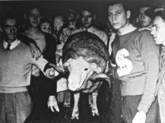 NCSU students with Ramses. Love the State-Carolina rivalry #NCState #NCSU #blogpost #Wolfpack