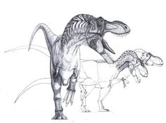 http://sassani-dinoart.webs.com/Tarbosaurus%20WIP%20update1.jpg?0.8635285428608086
