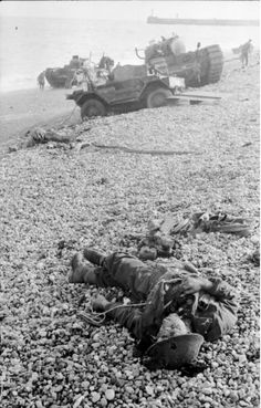 29th infantry division d-day casualties