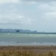 The sea is a bit on the choppy side today in #whitianga