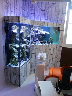 fabricant d'aquarium fosse sur mesure  avec décors en résine recréent les fonds marins.